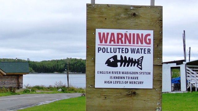 Contamination au mercure à Grassy Narrows : l'Ontario s'engage à nettoyer