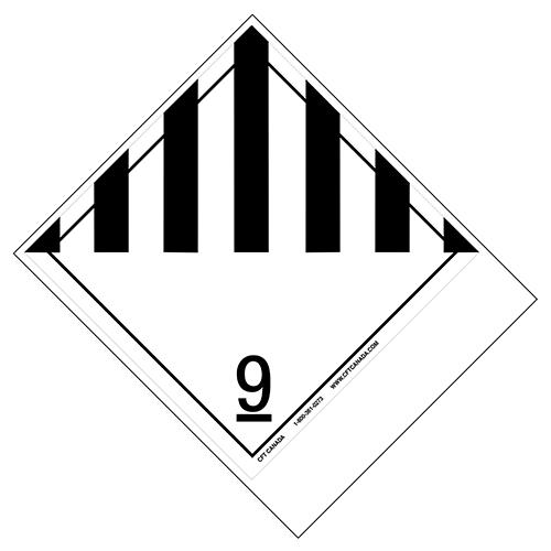 Class-9-blank
