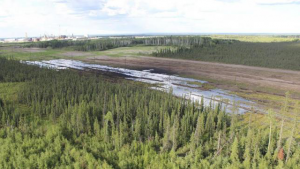 A Nexen pipeline spills five million liters of bitumen